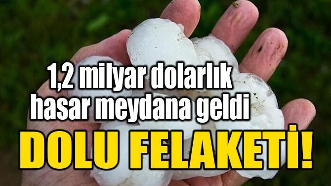 DOLU FELAKETİ!