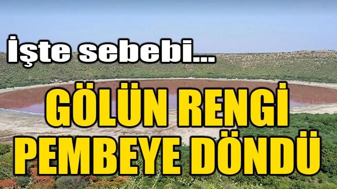 GÖLÜN RENGİ PEMBEYE DÖNDÜ, İŞTE SEBEBİ!