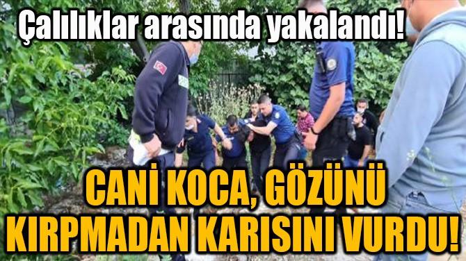 CANİ KOCA, GÖZÜNÜ KIRPMADAN KARISINI VURDU!