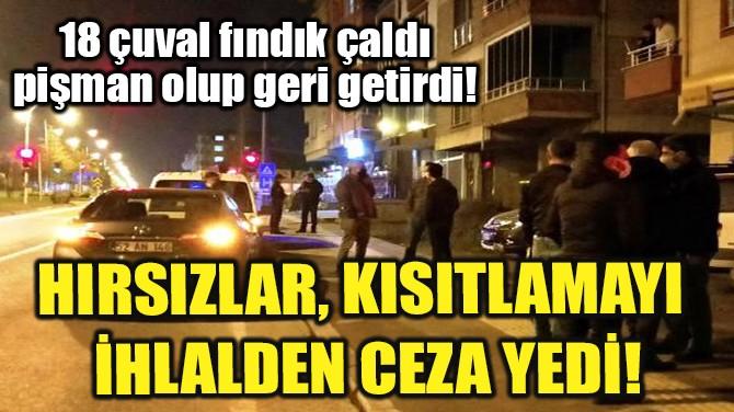 HIRSIZLAR, KISITLAMAYI İHLALDEN CEZA YEDİ!