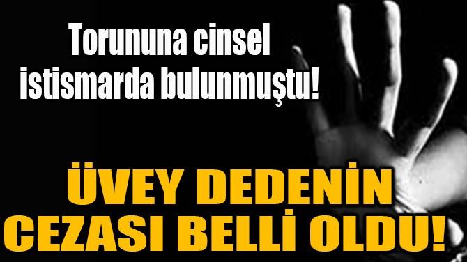 ÜVEY DEDENİN CEZASI BELLİ OLDU!
