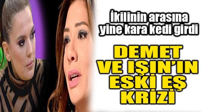 DEMET AKALIN VE IŞIN KARACA'NIN ESKİ EŞ KRİZİ!