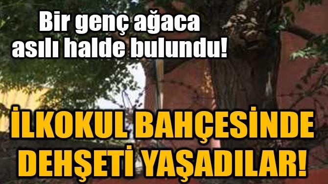 BİR GENÇ AĞACA ASILI HALDE BULUNDU!