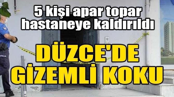 DÜZCE'DE GİZEMLİ KOKU