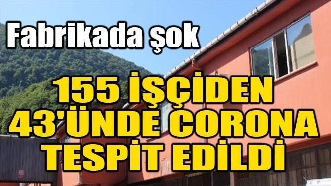 155 İŞÇİDEN 43'ÜNDE CORONA TESPİT EDİLDİ