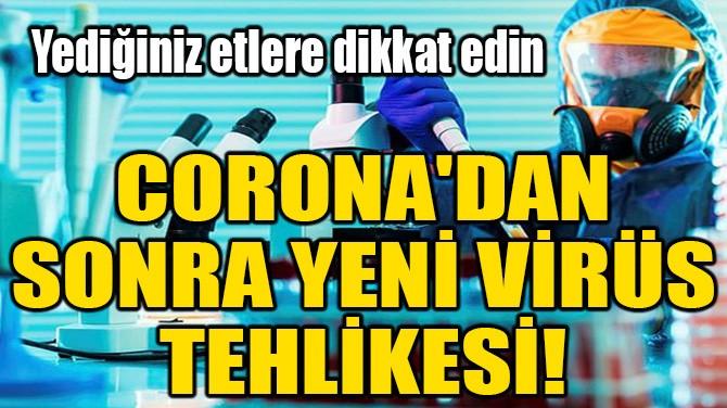 CORONA'DAN SONRA YENİ VİRÜS TEHLİKESİ!