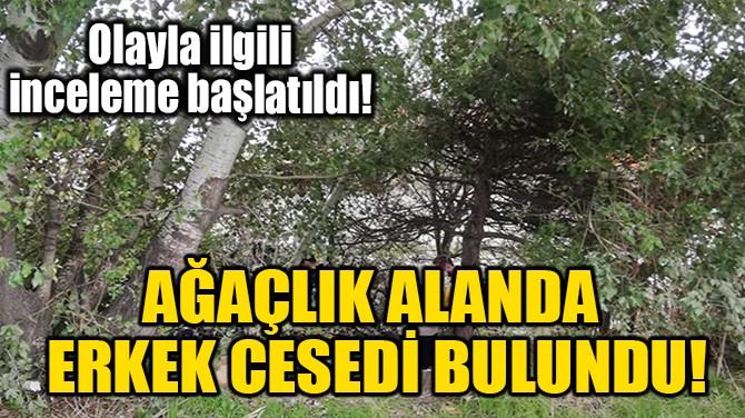 AĞAÇLIK ALANDA ERKEK CESEDİ BULUNDU!