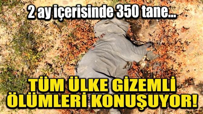 TÜM ÜLKE GİZEMLİ ÖLÜMLERİ KONUŞUYOR!