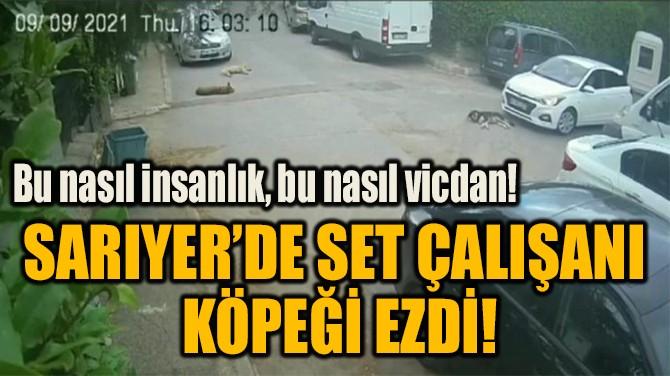 SARIYER'DE SET ÇALIŞANI  KÖPEĞİ EZDİ!
