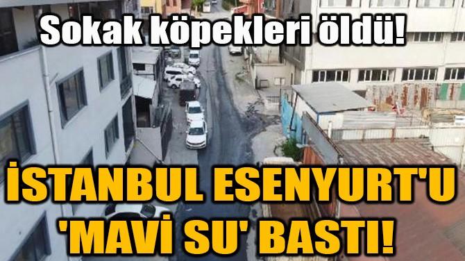 İSTANBUL ESENYURT'U 'MAVİ SU' BASTI!