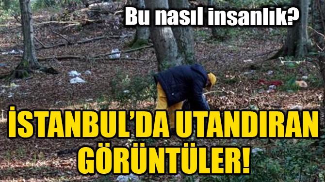 İSTANBUL'DA UTANDIRAN GÖRÜNTÜLER!