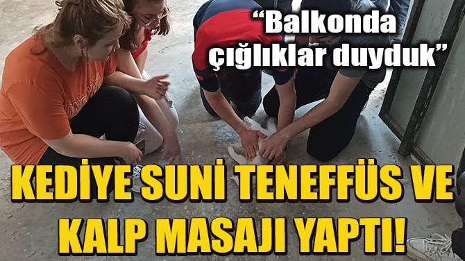 TIP ÖĞRENCİSİ KEDİYE KALP MASAJI VE SUNİ TENEFFÜS YAPTI!