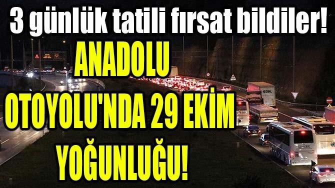ANADOLU OTOYOLU'NDA 29 EKİM  YOĞUNLUĞU!