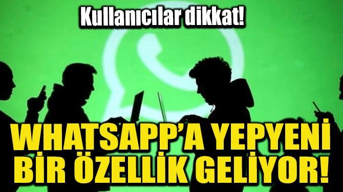 WHATSAPP'A YEPYENİ BİR ÖZELLİK GELİYOR!