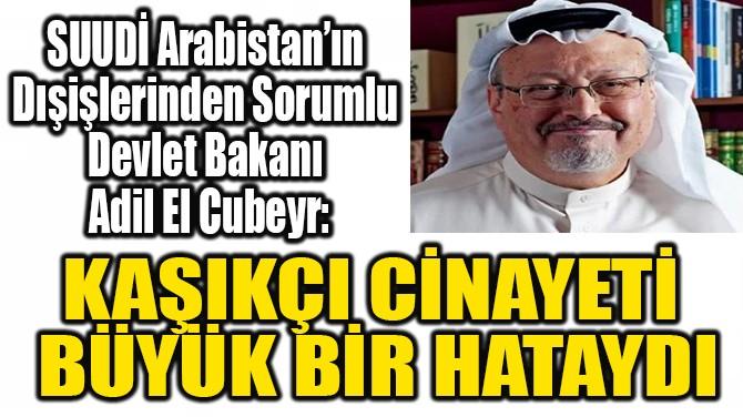 """""""KAŞIKÇI CİNAYETİ  BÜYÜK  BİR HATAYDI"""""""