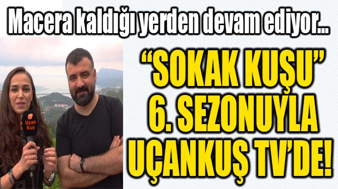 """SOKAK KUŞU"" 6. SEZONUYLA UÇANKUŞ TV'DE!"