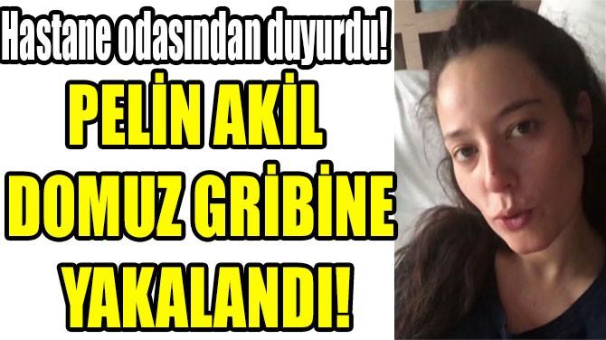 PELİN AKİL  DOMUZ GRİBİNE  YAKALANDI!