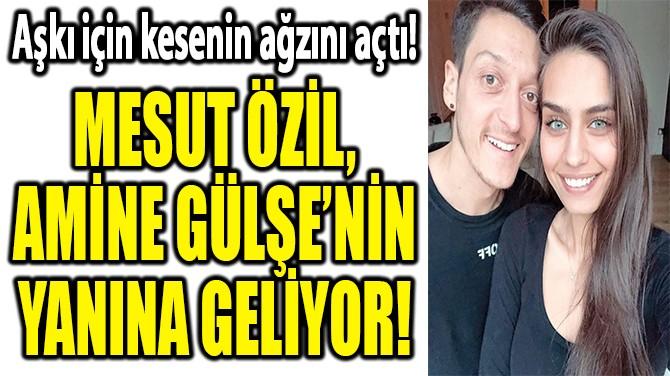 MESUT VE AMİNE İSTANBUL'DAN EV BAKIYOR!