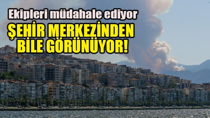 İZMİR'DEKİ YANGIN ŞEHİR MERKEZİNDEN BİLE GÖRÜNÜYOR!