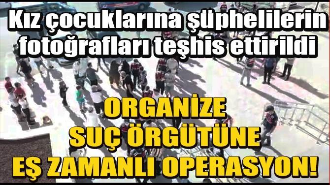 MUĞLA'DA, ORGANİZE SUÇ ÖRGÜTÜNE EŞ ZAMANLI OPERASYON: 15 GÖZALTI