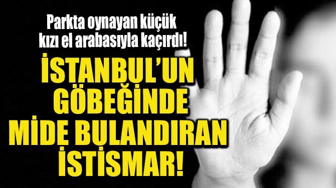 İSTANBUL'UN GÖBEĞİNDE MİDE BULANDIRAN İSTİSMAR!