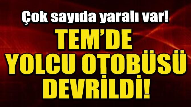 TEM'DE YOLCU OTOBÜSÜ DEVRİLDİ! ÇOK SAYIDA YARALI VAR!