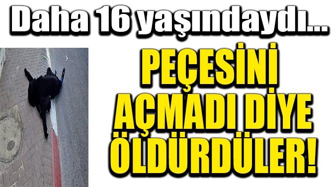PEÇESİNİ AÇMADI DİYE SOKAK ORTASINDA ÖLDÜRDÜLER!