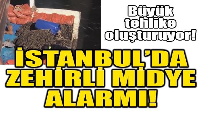 İSTANBUL'DA ZEHİRLİ MİDYE ALARMI!