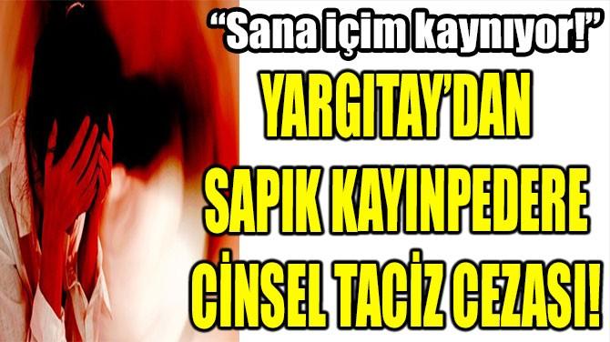 YARGITAY'DAN  SAPIK KAYINPEDERE  CİNSEL TACİZ CEZASI!