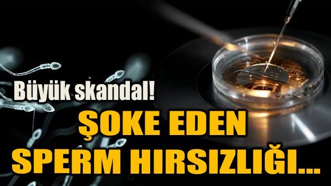 ŞOKE EDEN  SPERM HIRSIZLIĞI...