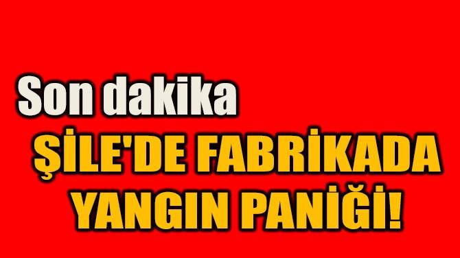 ŞİLE'DE FABRİKADA  YANGIN PANİĞİ!