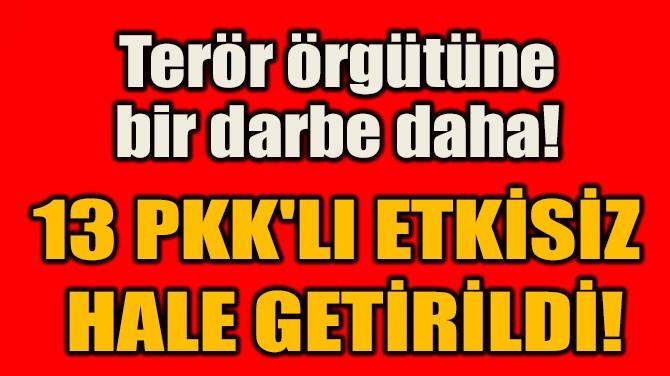 13 PKK'LI ETKİSİZ  HALE GETİRİLDİ!