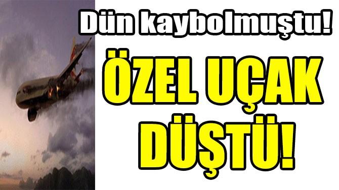 ÖZEL UÇAK DÜŞTÜ!
