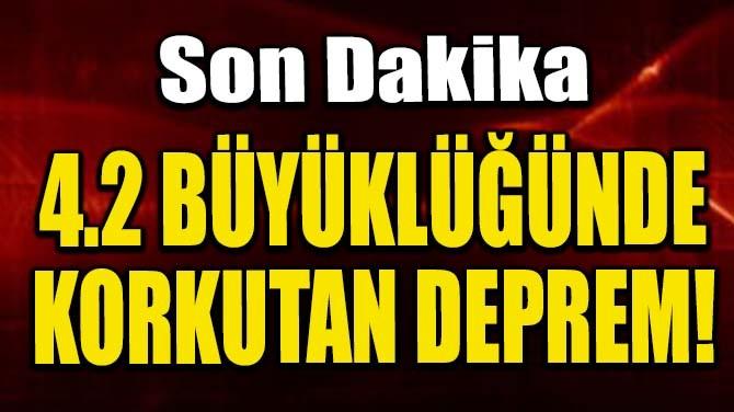 ENDONEZYA'DA 4.2 BÜYÜKLÜĞÜNDE DEPREM!