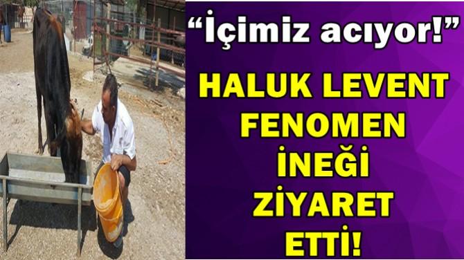 HALUK LEVENT FENOMEN İNEĞİ ZİYARET ETTİ!