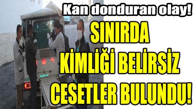 SINIRDA KİMLİĞİ BELİRSİZ CESETLER BULUNDU!