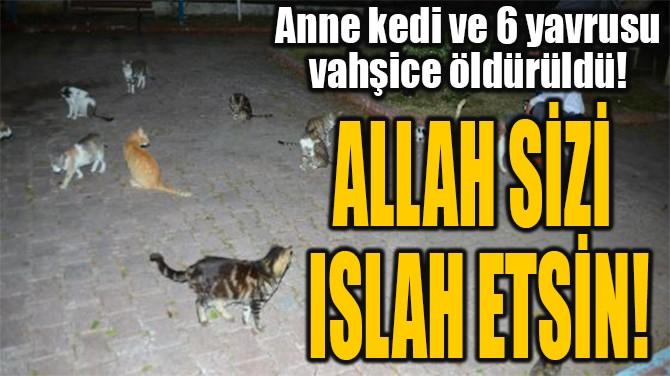 ALLAH SİZİ ISLAH ETSİN!