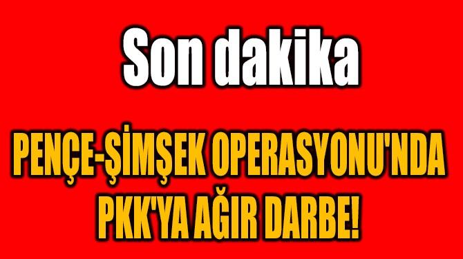 PENÇE-ŞİMŞEK OPERASYONU'NDA  PKK'YA AĞIR DARBE!