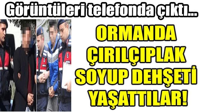 ORMANDA  ÇIRILÇIPLAK  SOYUP DEHŞETİ  YAŞATTILAR!
