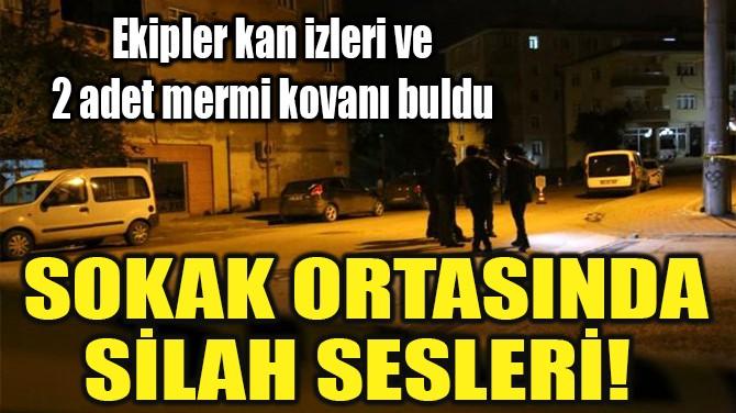 SOKAK ORTASINDA SİLAH SESLERİ!