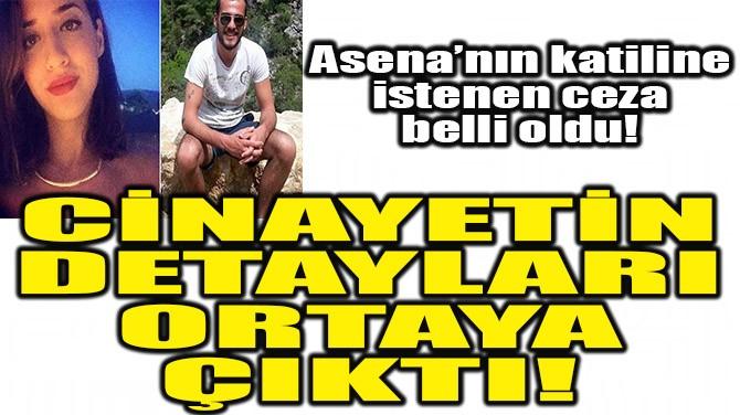 CİNAYETİN DETAYLARI ORTAYA ÇIKTI!