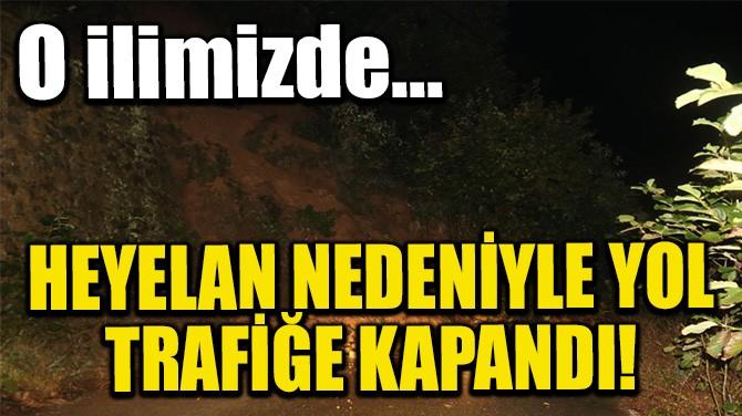 HEYELAN NEDENİYLE YOL TRAFİĞE KAPANDI!