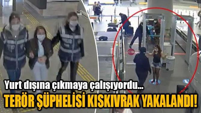 TERÖR ŞÜPHELİSİ KISKIVRAK YAKALANDI!