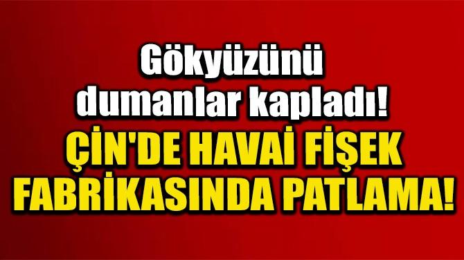 ÇİN'DE HAVAİ FİŞEK FABRİKASINDA PATLAMA