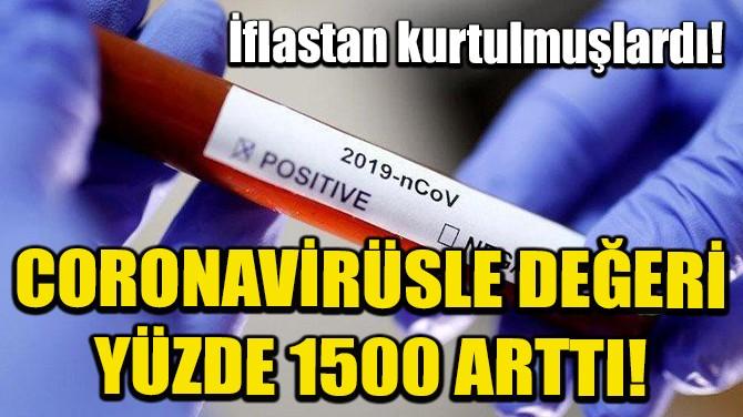 CORONAVİRÜSLE DEĞERİ YÜZDE 1500 ARTTI