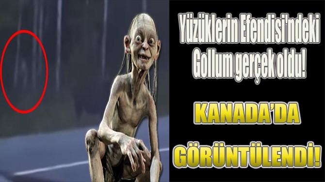 YÜZÜKLERİN EFENDİSİ'NDEKİ GOLLUM GERÇEK OLDU!