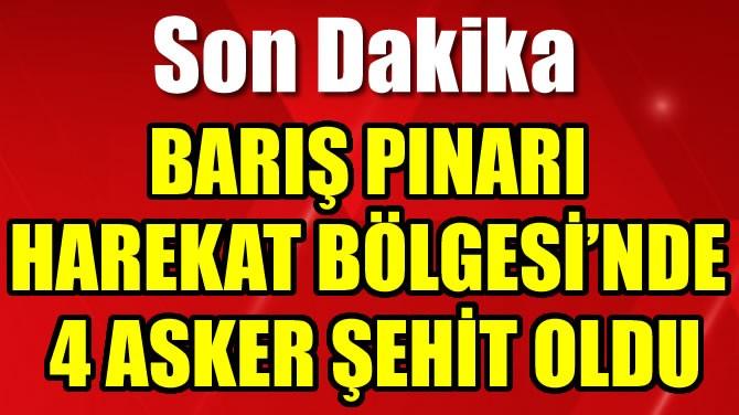 BARIŞ PINARI HAREKAT BÖLGESİ'NDE 4 ASKER ŞEHİT OLDU