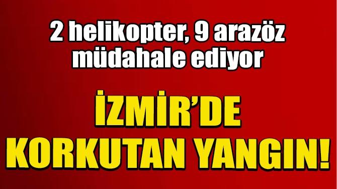 İZMİR'DE KORKUTAN ORMAN YANGINI!