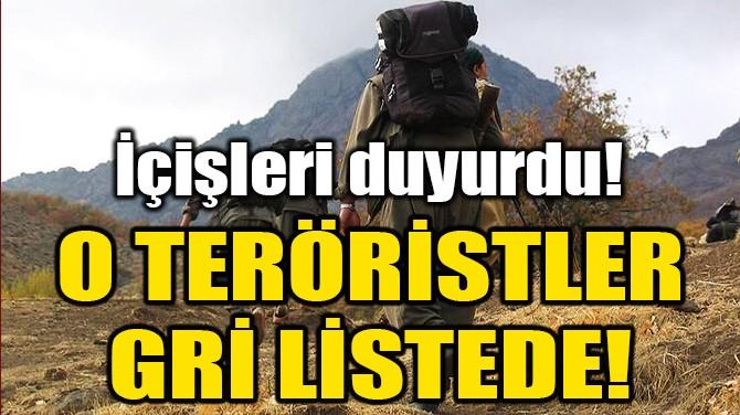 O TERÖRİSTLERDEN 4'Ü GRİ LİSTEDE!