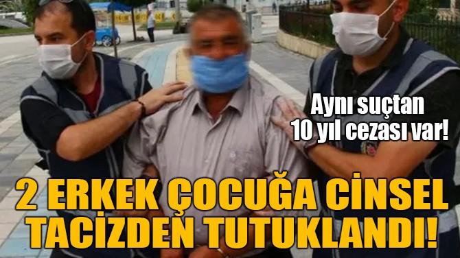 2 ERKEK ÇOCUĞA CİNSEL TACİZDEN TUTUKLANDI!